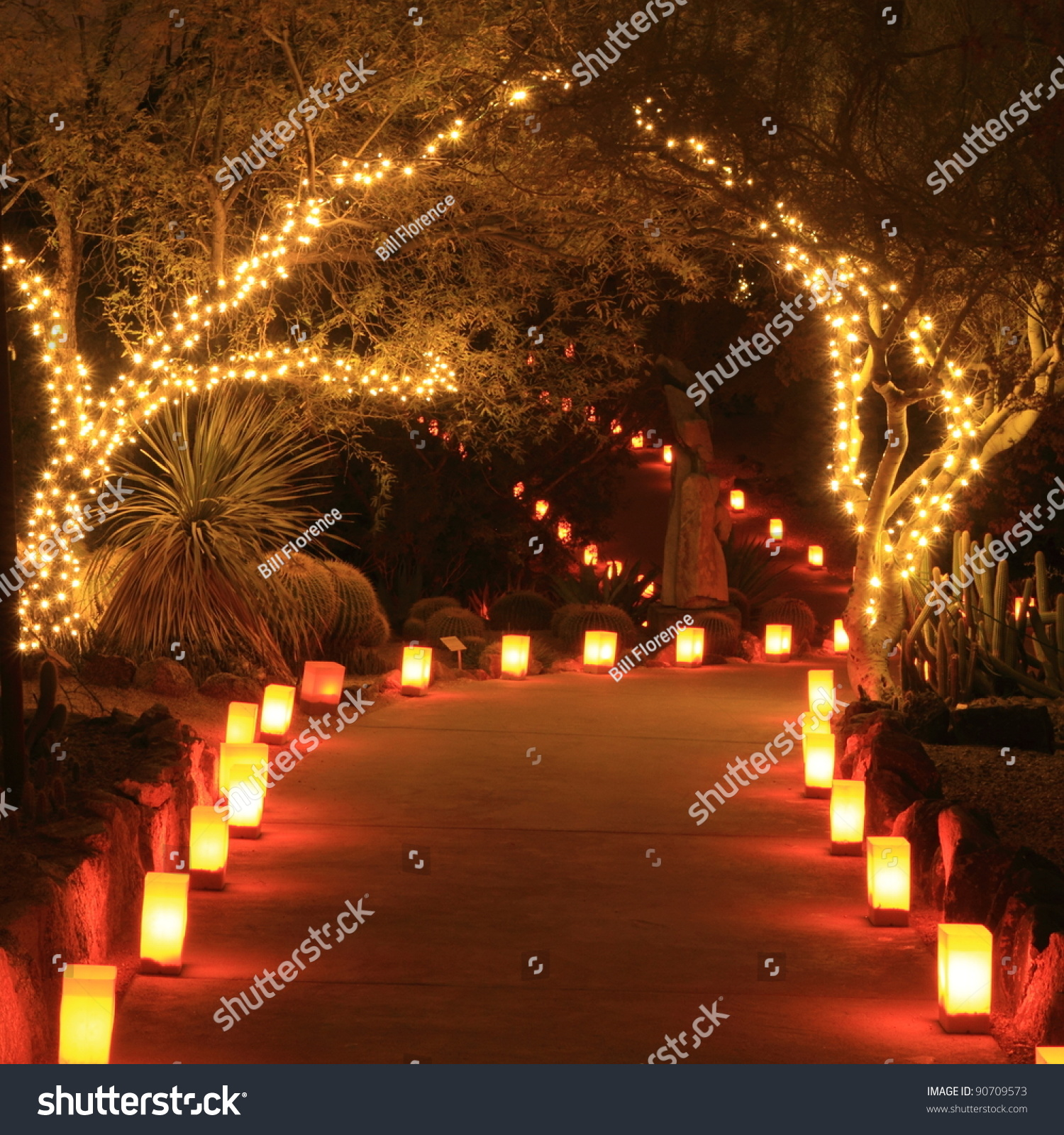 Trees path lit holiday lights luminarias stock photo for Sidewalk christmas lights