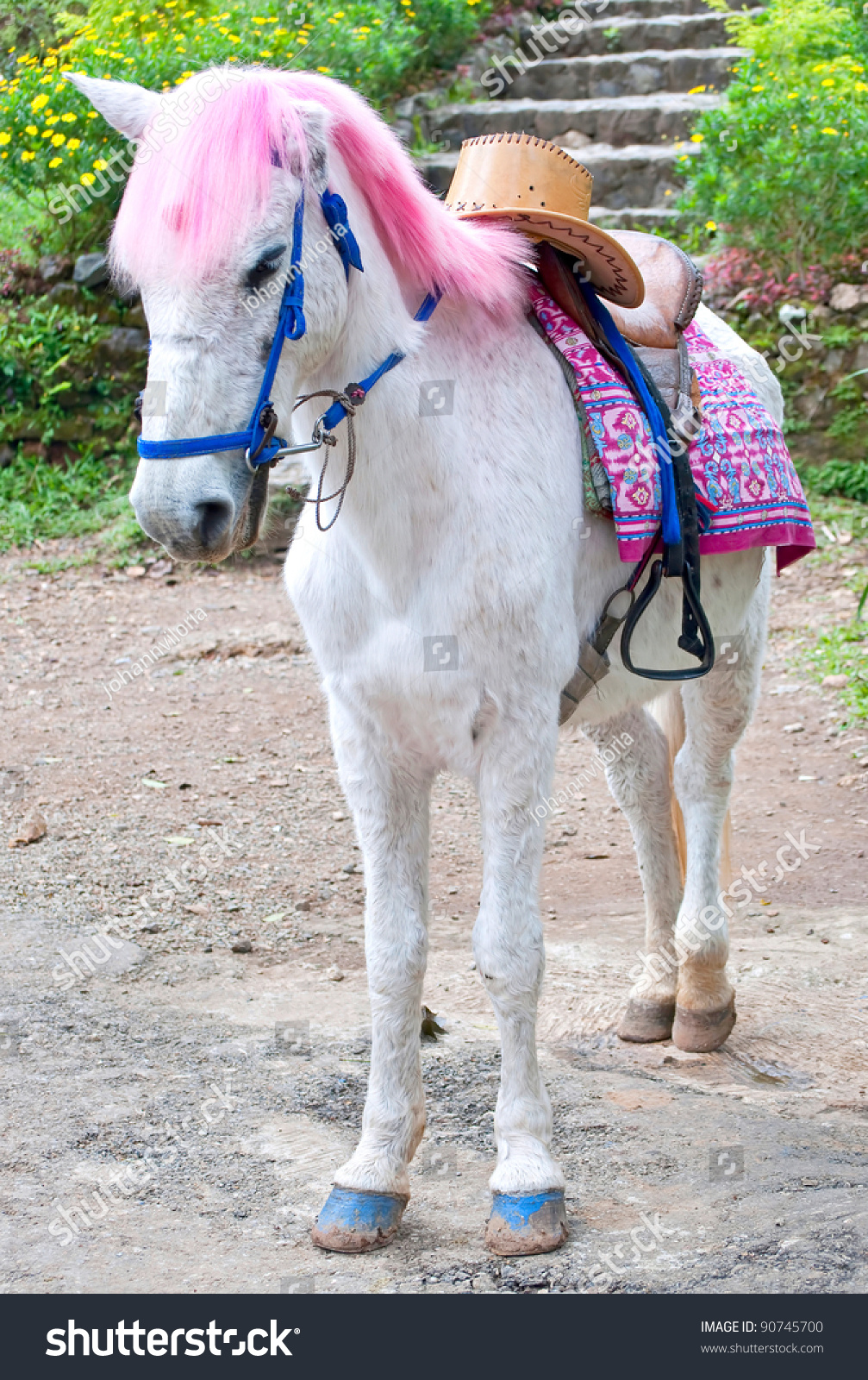 White Horse Pink Hair Cowboy Hat Stock Photo Edit Now 90745700