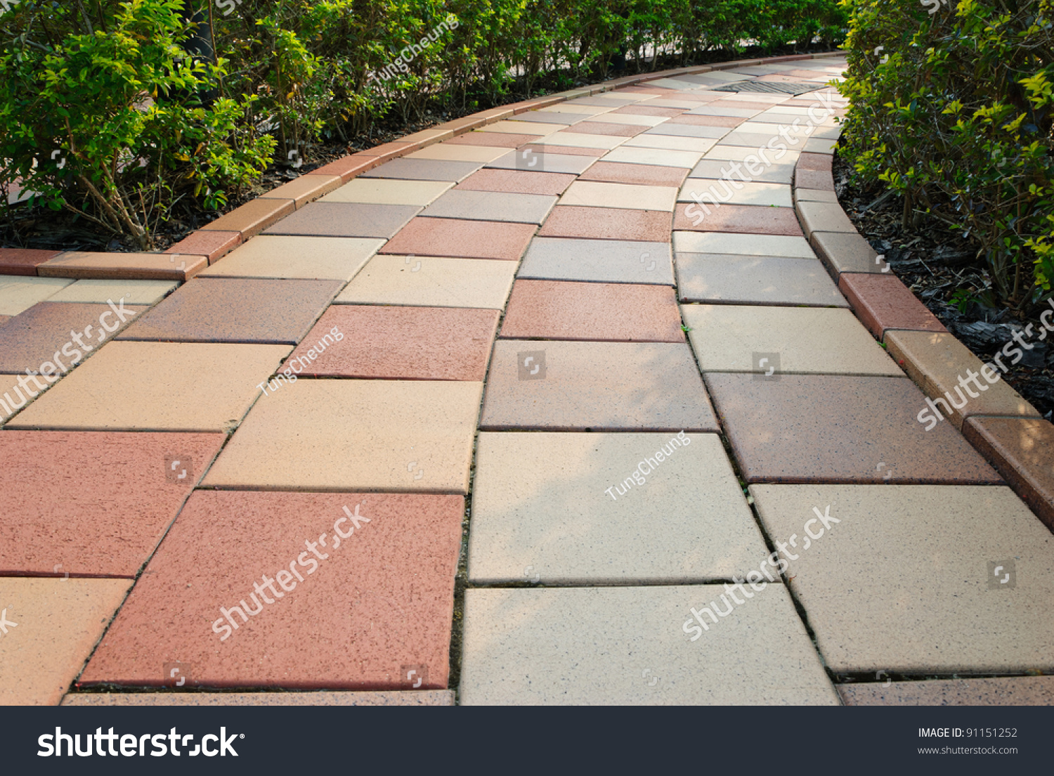 Problems With Brick Floors : Brick floor pathway with cut bush in both side stock photo
