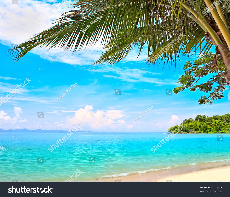 Tropical Island Beaches: Palm Tree, Mountain On Remote Island, White