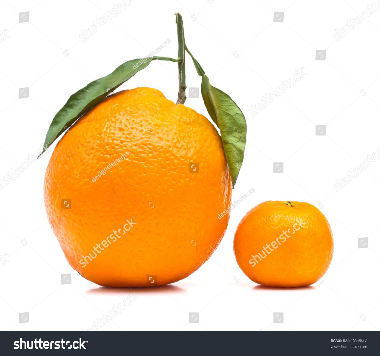 big small orange on white background stock photo edit now 91599827