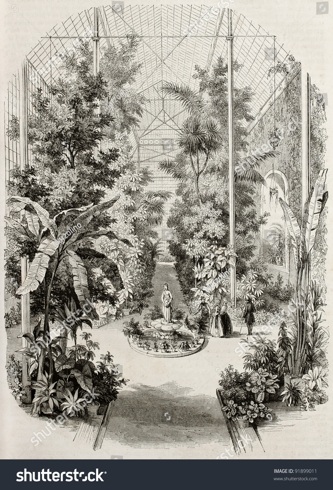 Greenhouse old illustration jardin des plantes paris for Jardin pittoresque