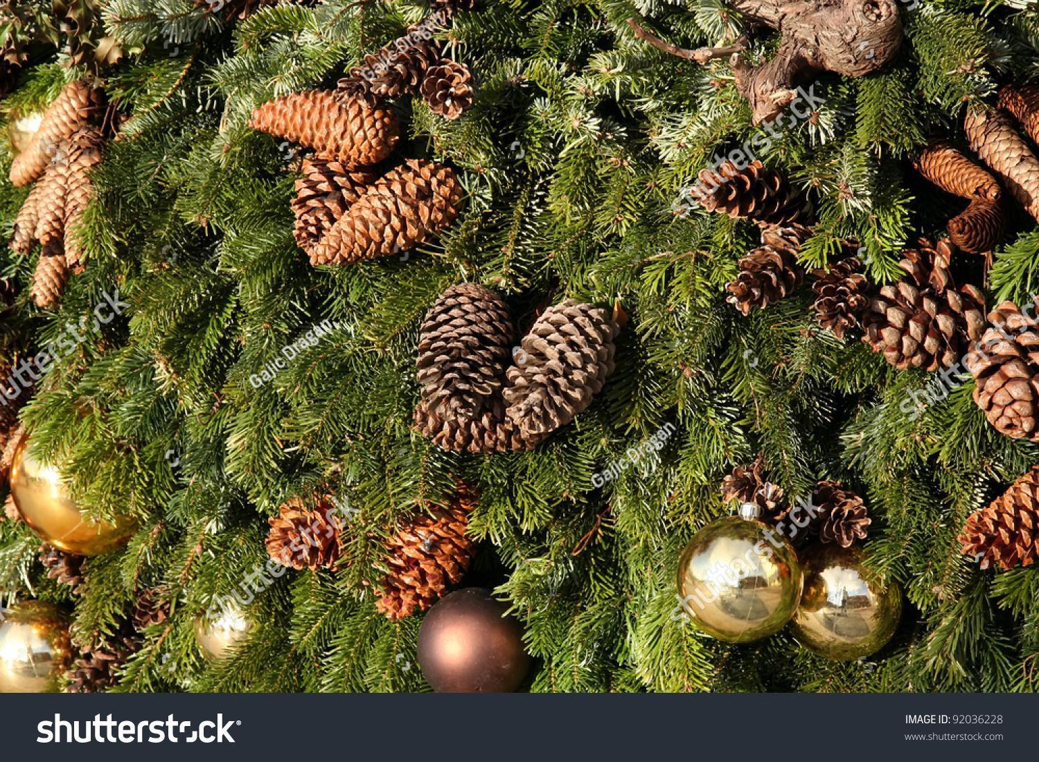 Christmas tree decorations christmas decorations with for Decorating pine cones for christmas tree