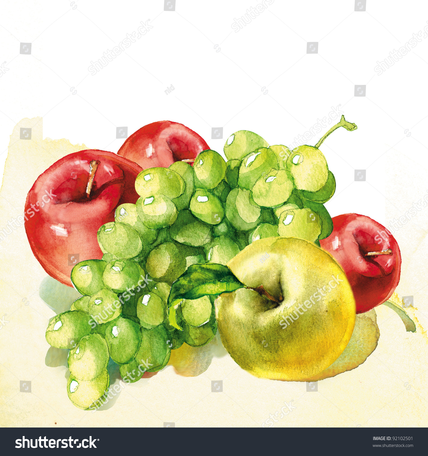 Fruit Watercolor Painting On White Background Stock Illustration ...