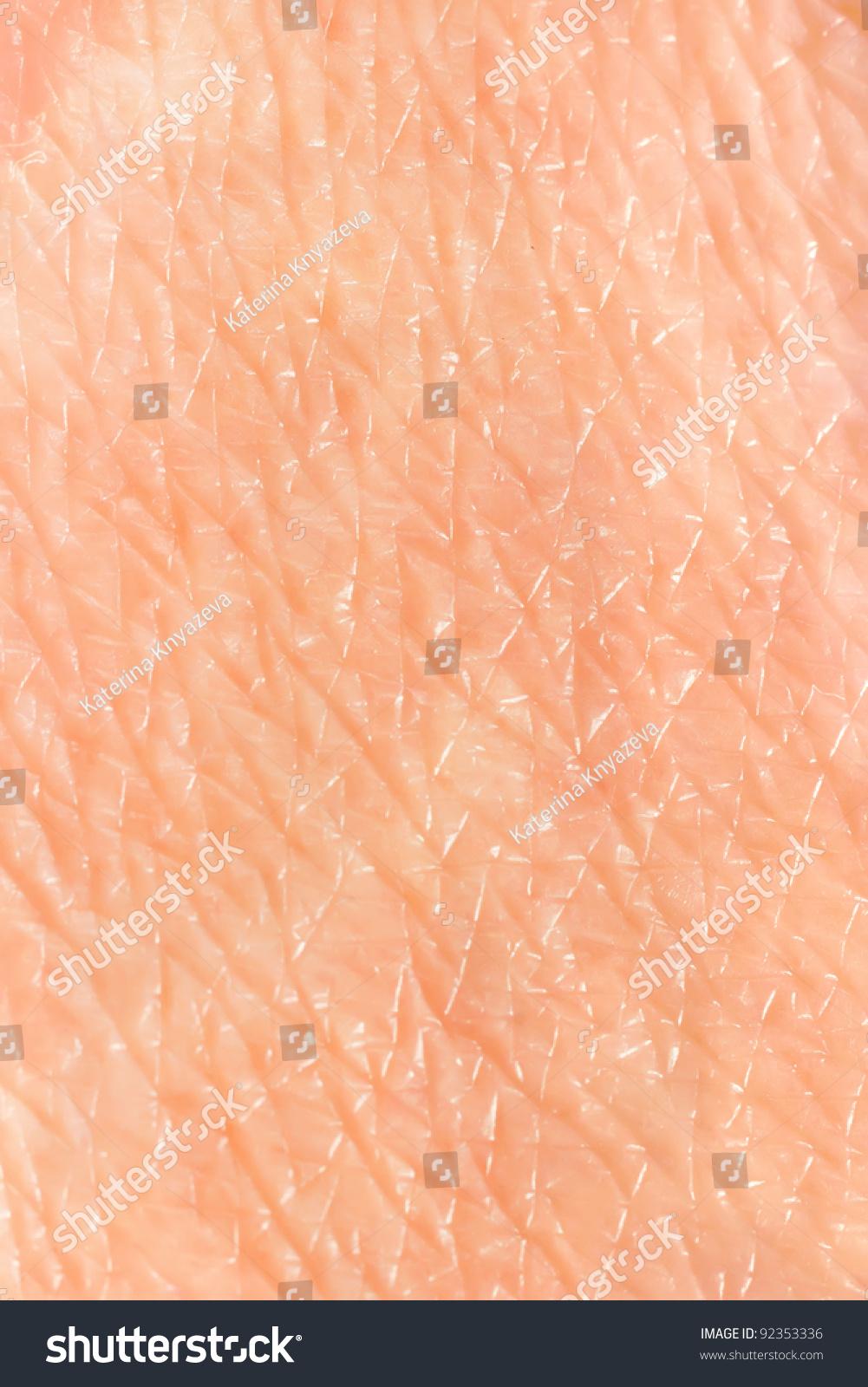 skin background stock photo 92353336 skin background stock photo 92353336