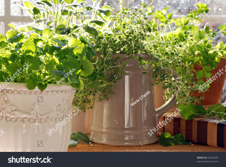 100 decorative canisters kitchen kitchen galley kitchen