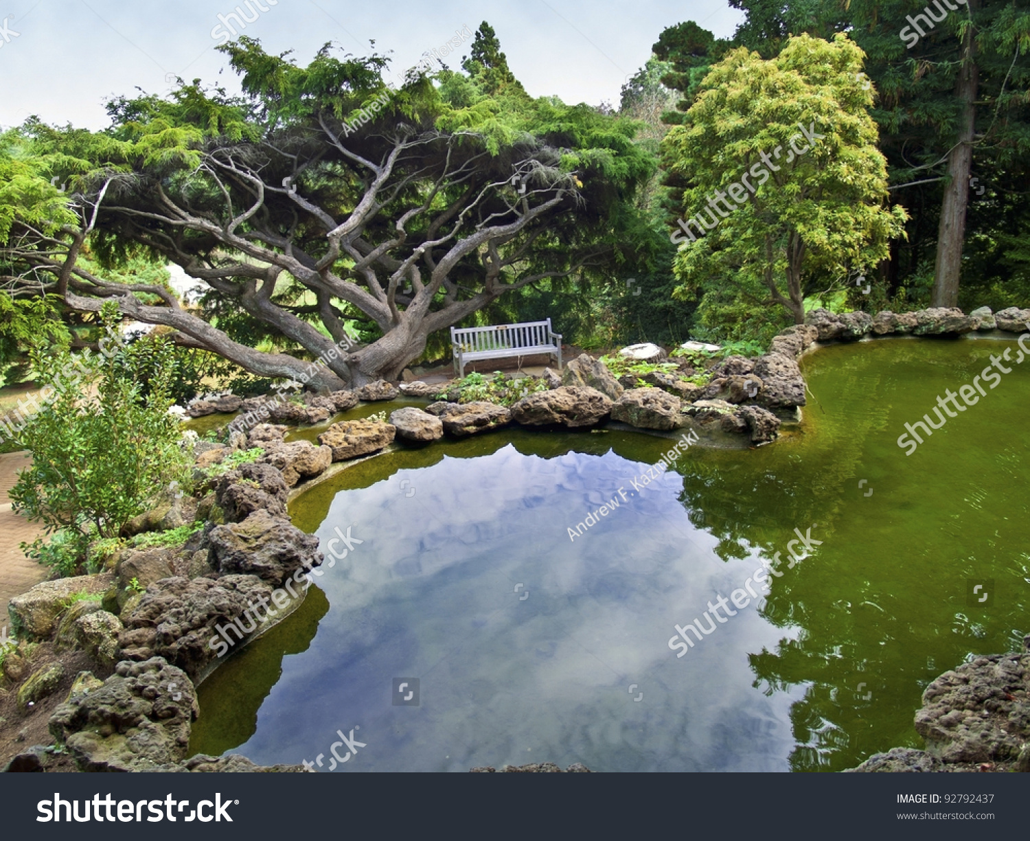 Ornamental pond view japanese style landscaped stock photo for Ornamental pond
