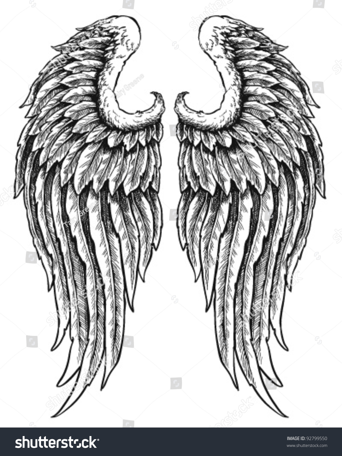 Hand Drawn Angel Wings Stock Vector 92799550