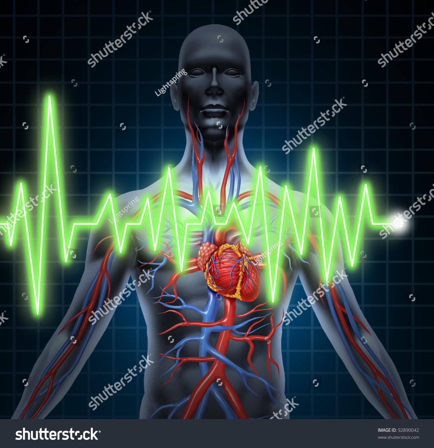 Cardiovascular Monitoring System : Ecg and ekg cardiovascular system monitoring with heart