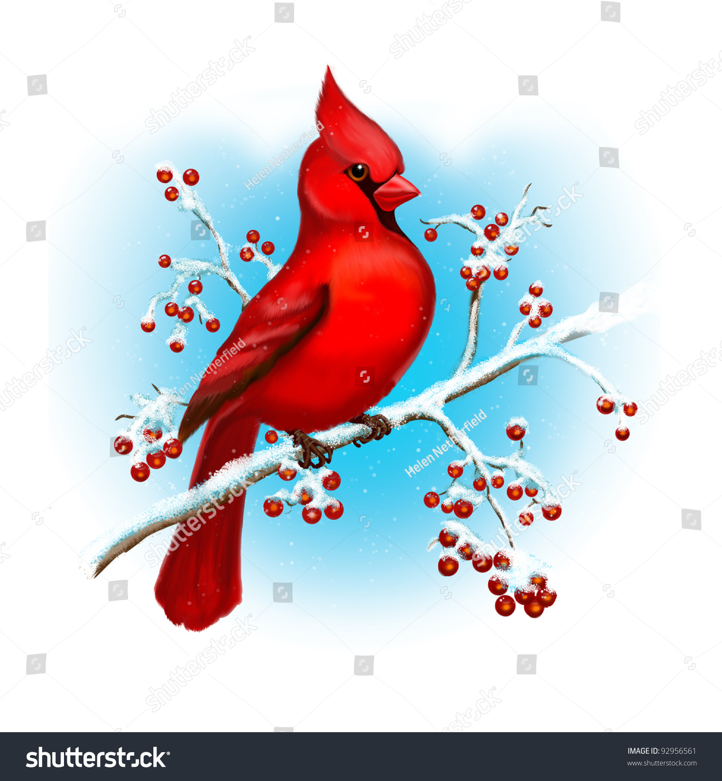 cardinal bird winter art stock illustration 92956561 shutterstock