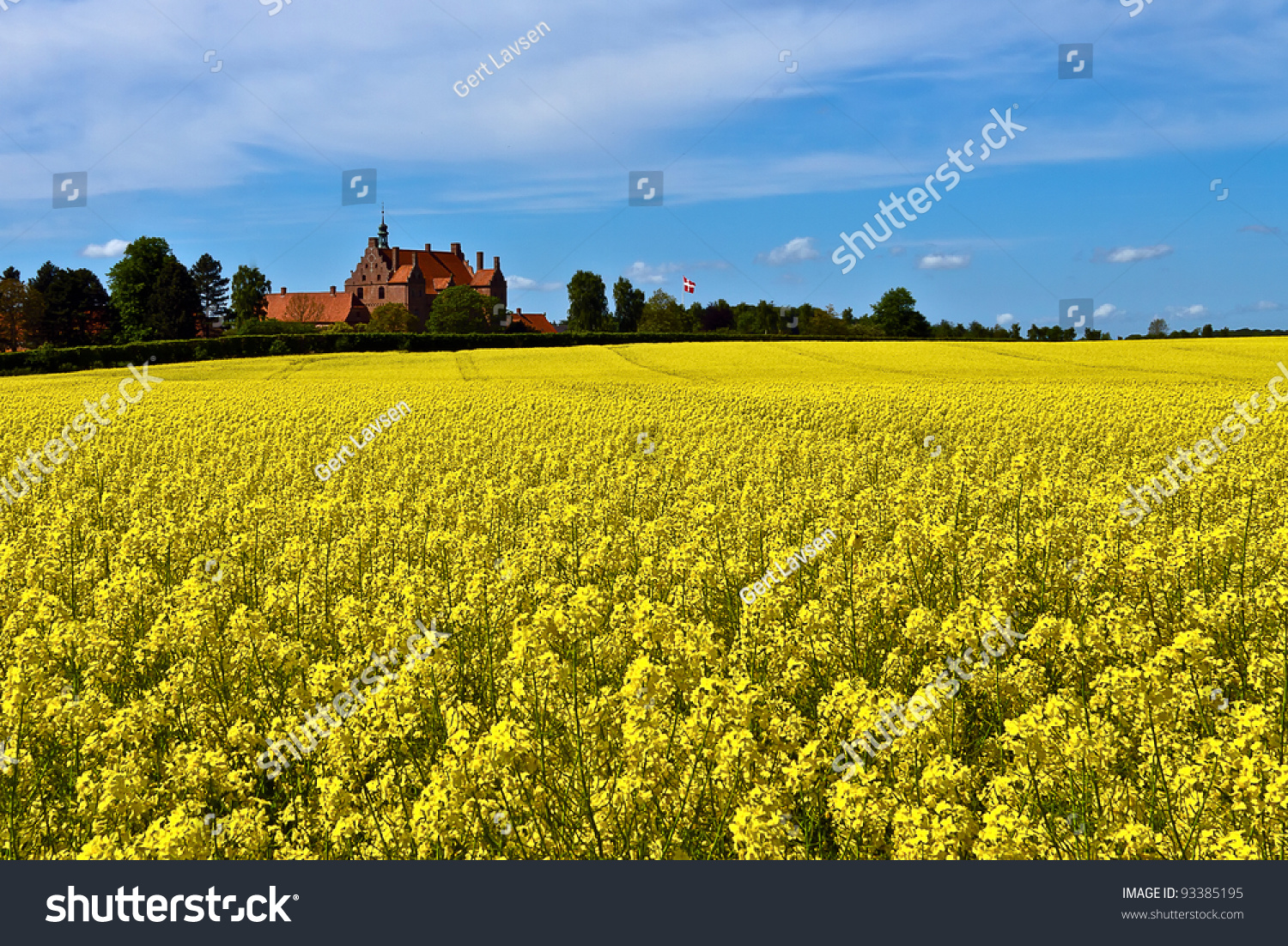 Surrounded By Canoloa Feilds Quotes: An Old Danish Castle Surrounded By Canola Fields Stock