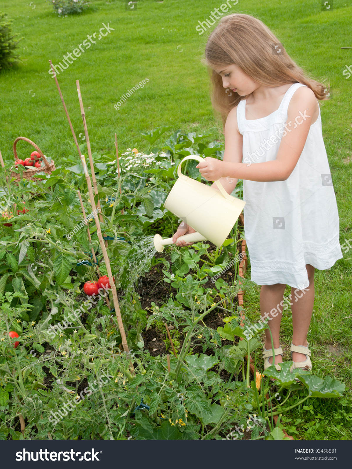 Gardening lovely girl watering plants in vegetable for Watering vegetable garden