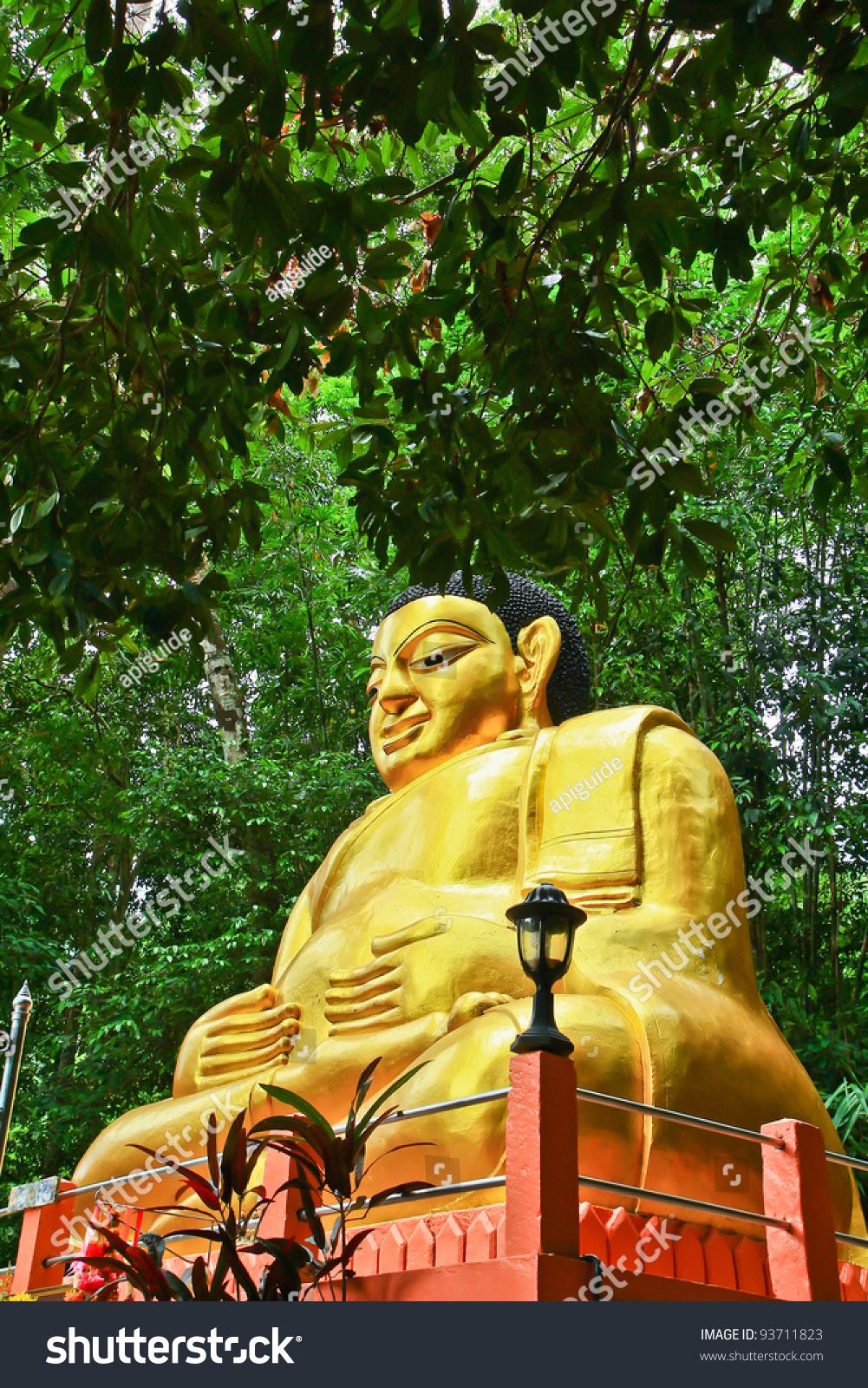 Fat Buddha Pics 14