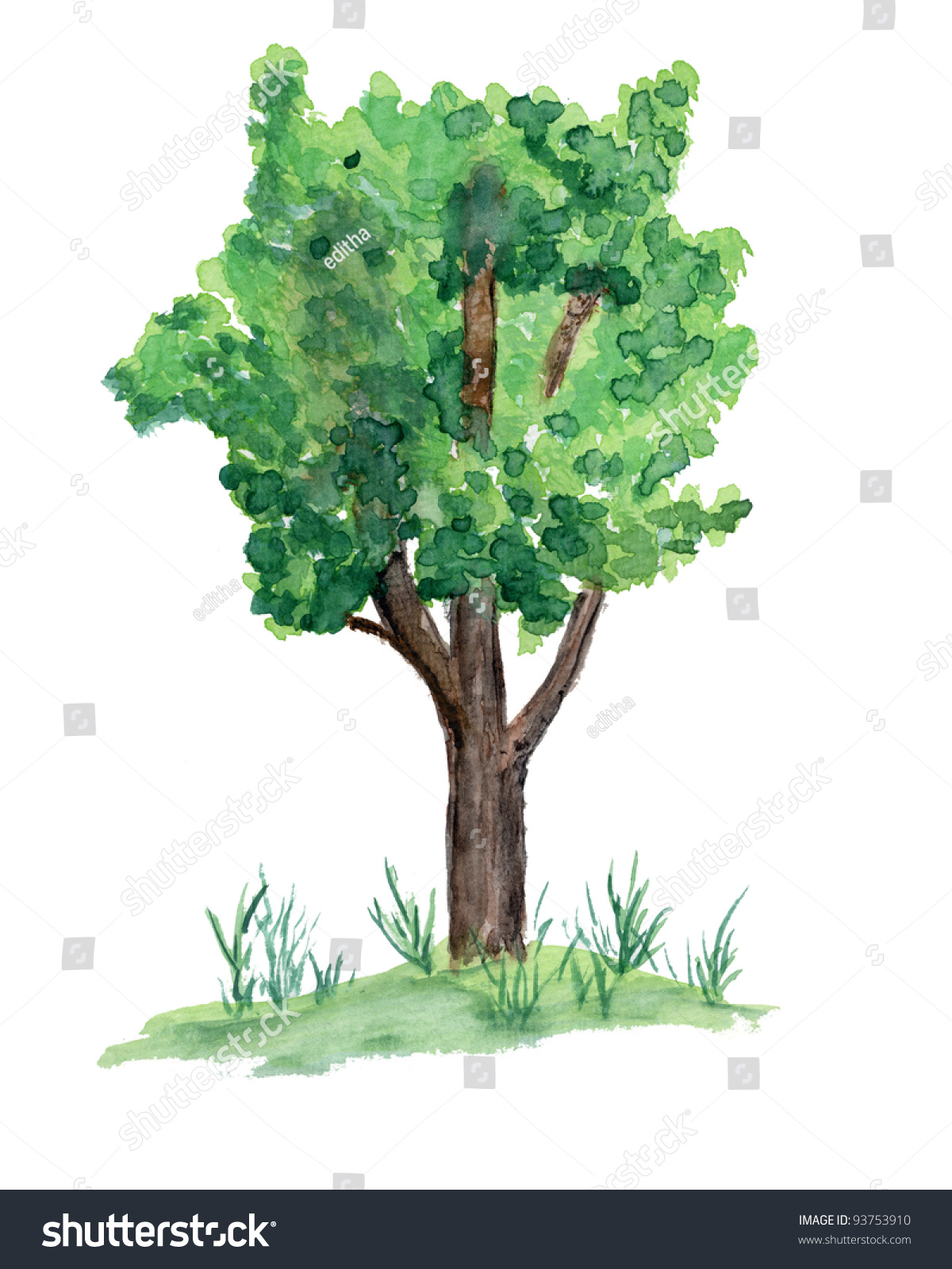 Watercolor Painting Tree On Grass Mound Stock Photo (Royalty Free ...