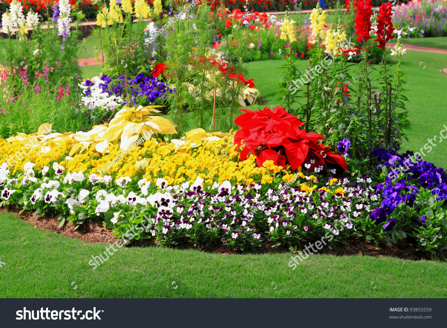 Flower garden background stock photo 93855559 shutterstock for Flowers and gardens pictures