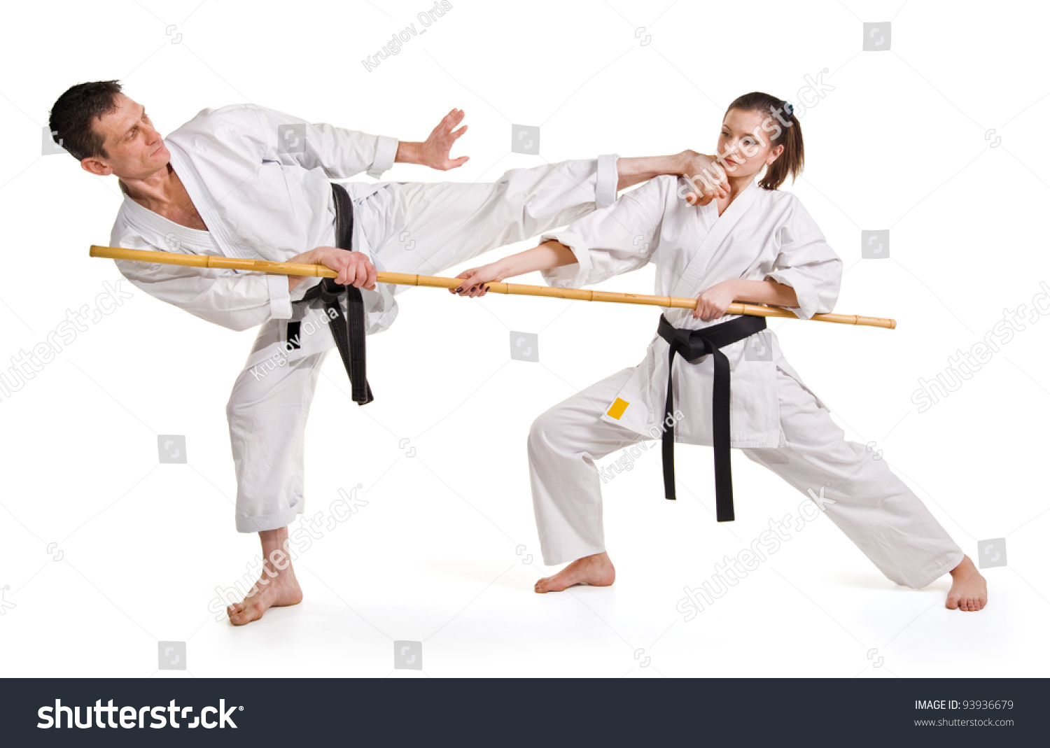Martial arts fighting stances
