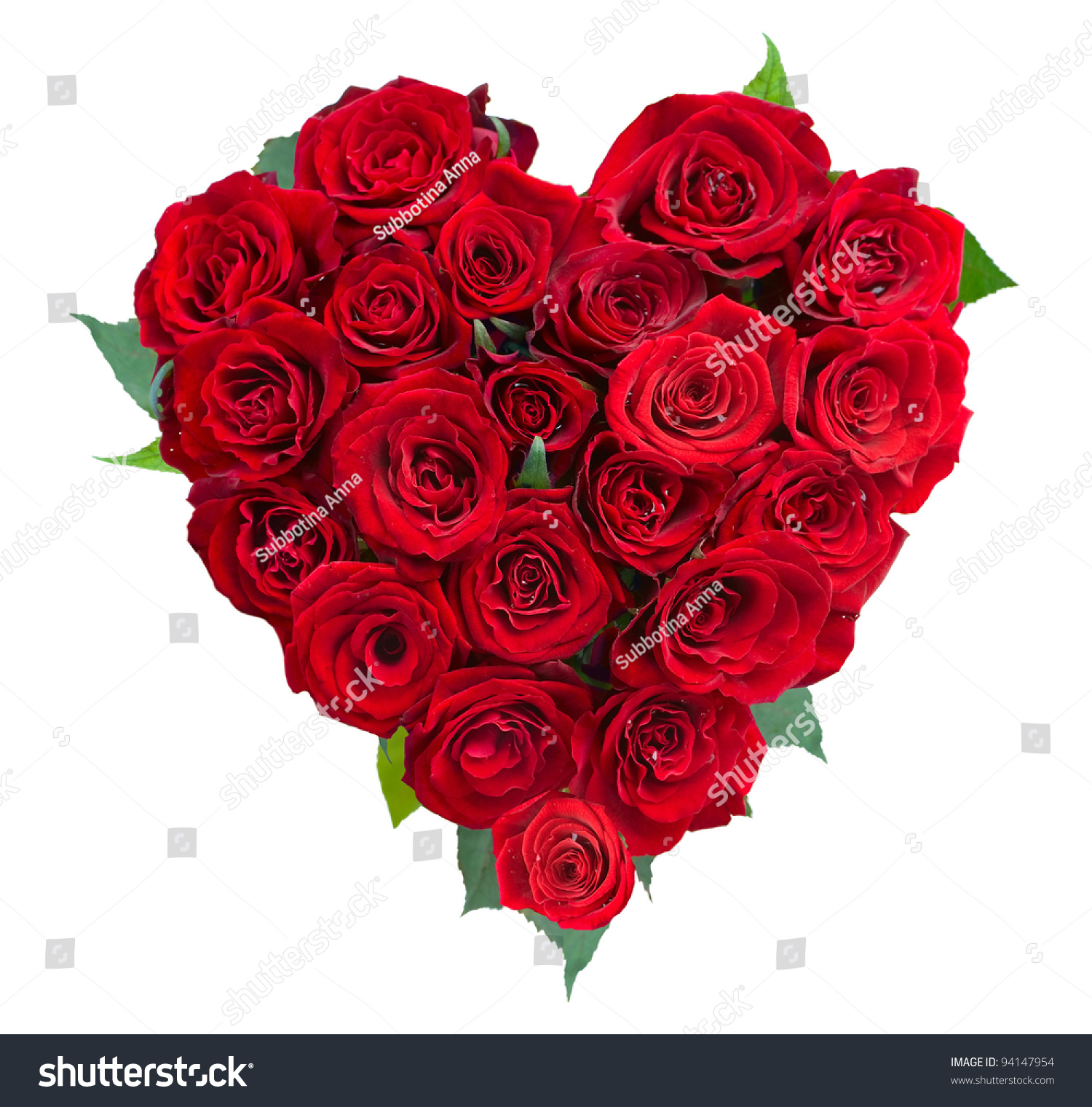 rose flowers heart over white valentine stock photo 94147954