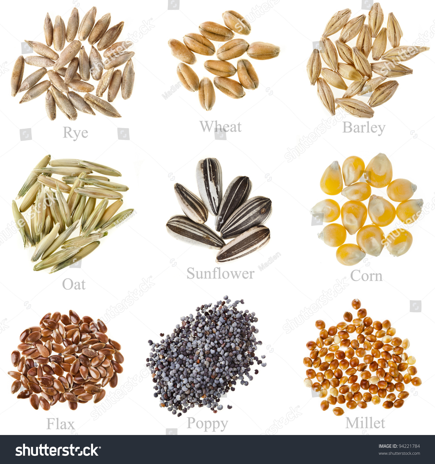 8ca40b339 دليلك الشامل لكل أنواع الحبوب - منتدى فتكات