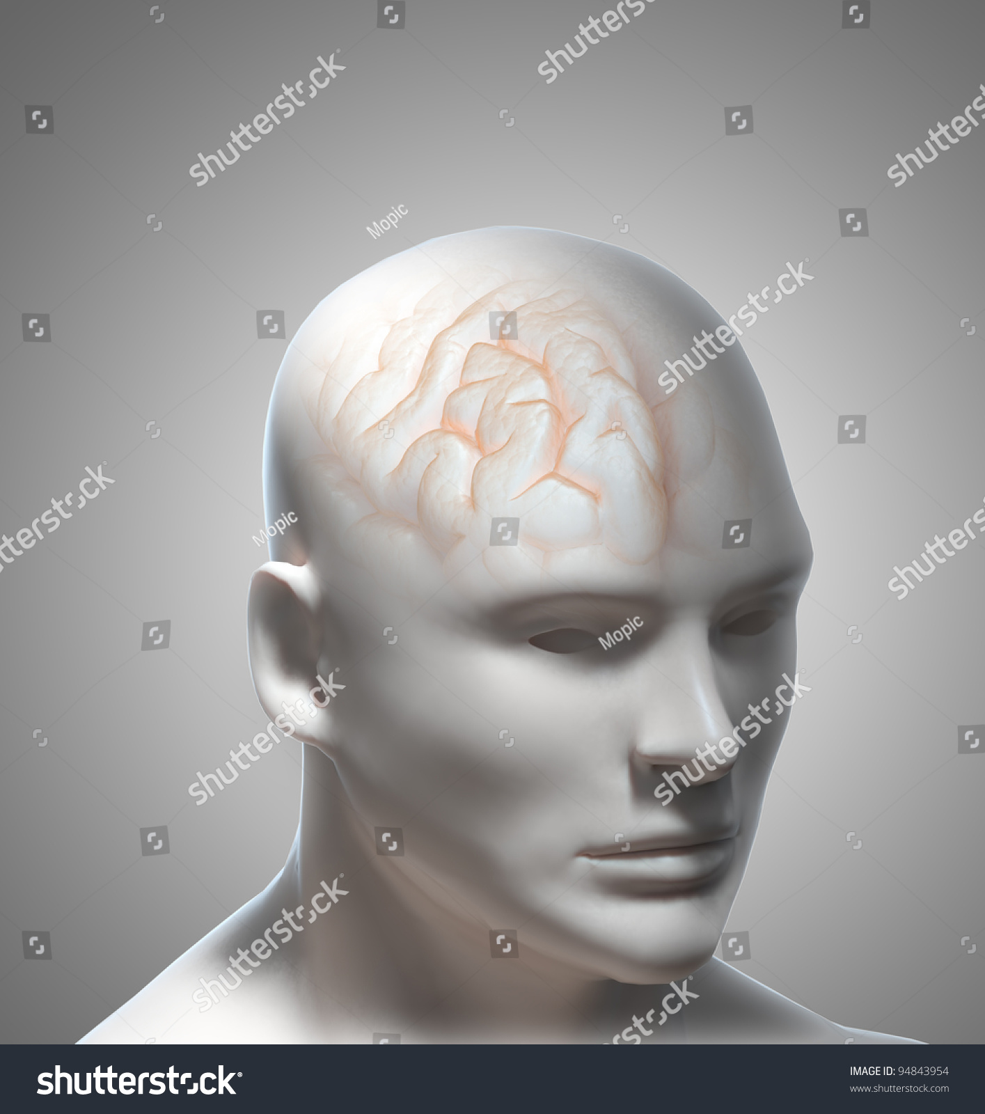 the concept of intelligence in psychology The field of psychology has always been interested in intelligence, what it is, and how it impacts an individual's ability to be successful in.