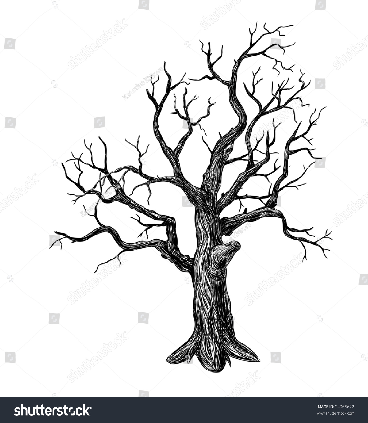 It is an image of Refreshing Leafless Tree Drawing