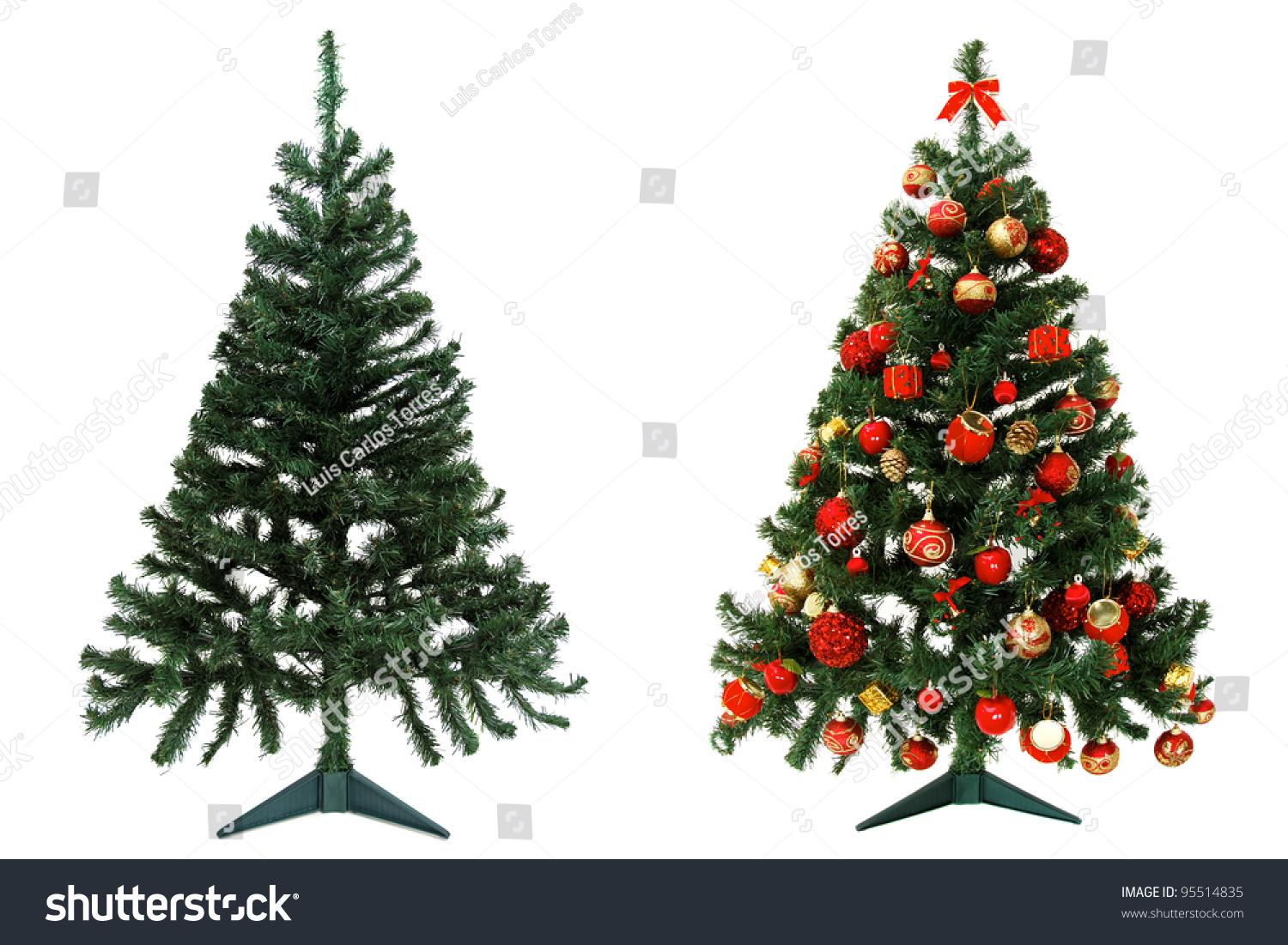 Before And After - Christmas Tree Isolated On White Background ...
