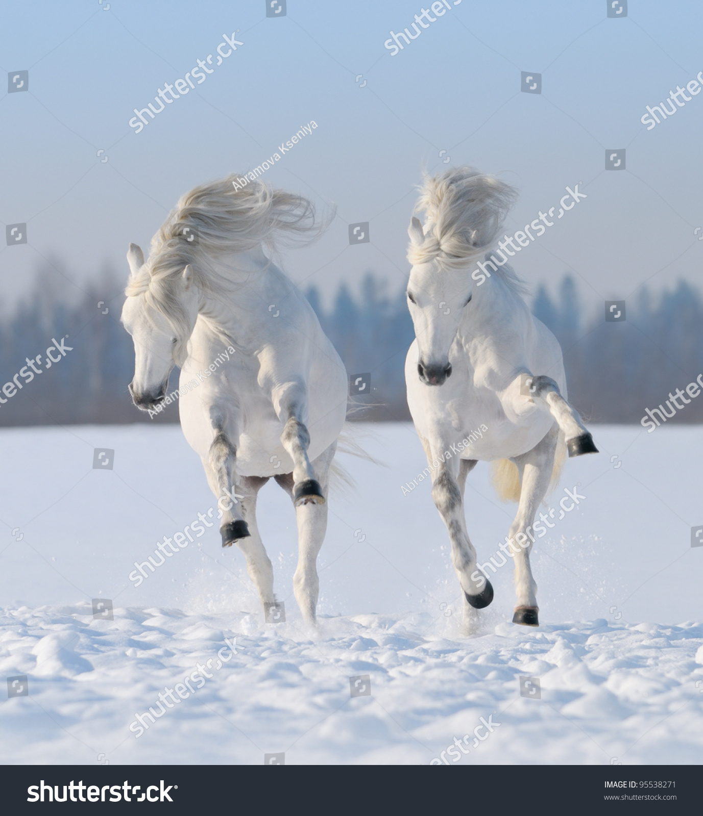 Running Horses Silhouette Wall Border Stock Photo Two Galloping Snow White Horses
