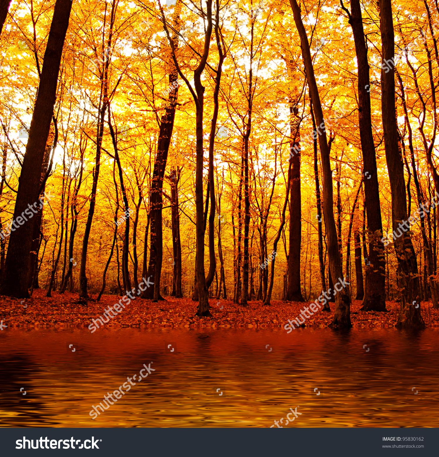 Beautiful Nature House: Lake Autumn Forest Beautiful Nature Background Stock Photo