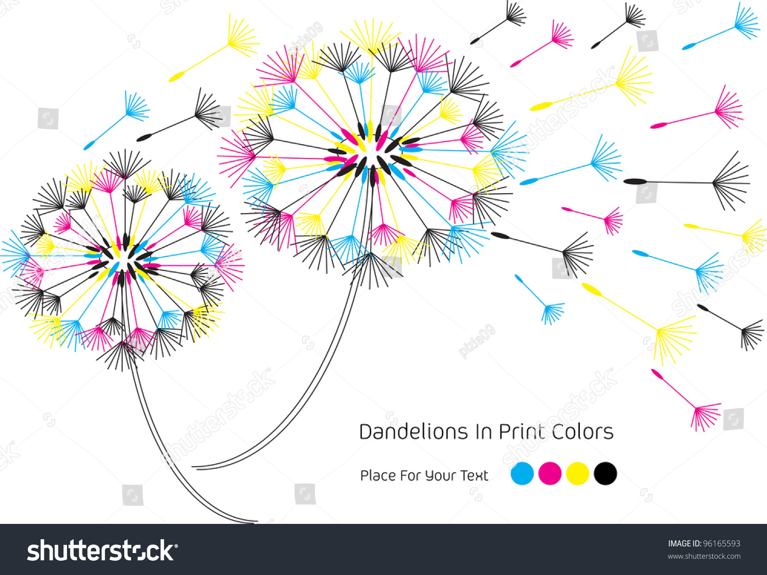 Vector Illustration With Dandelion Flowers And Seeds In