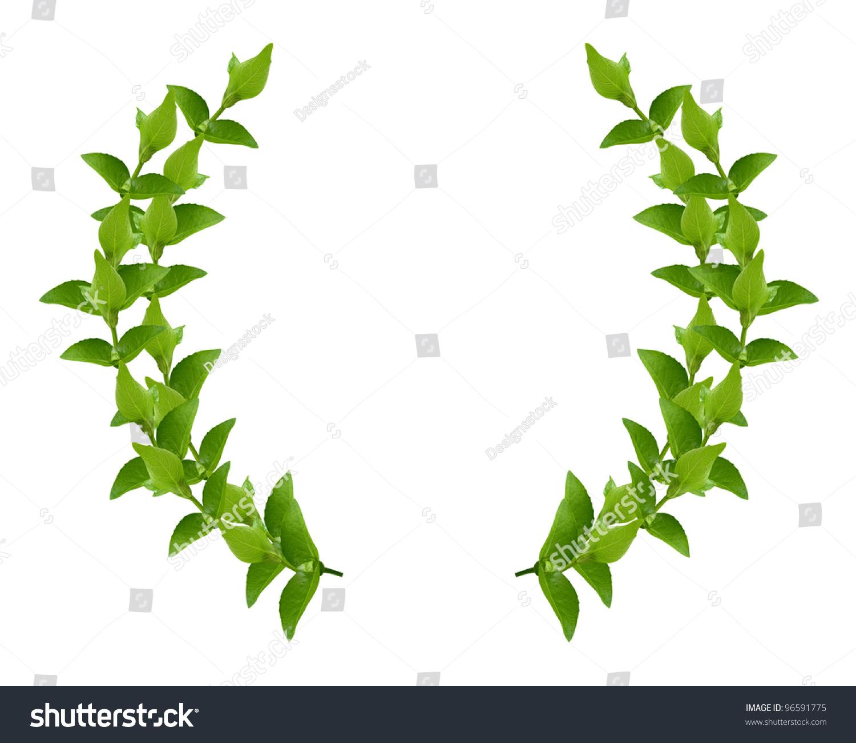 laurel leaf crown template - laurel wreath made by fresh green stock photo 96591775