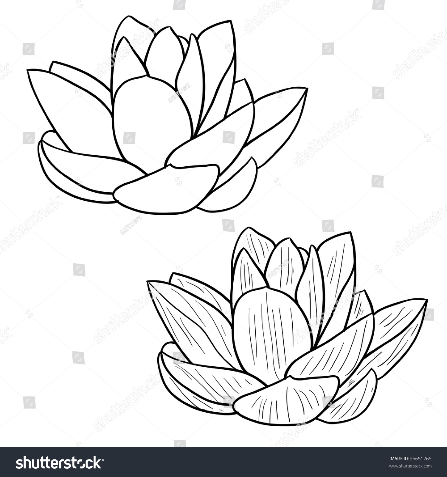 Royalty Free Oriental Lotus A Flower Illustration 96651265 Stock