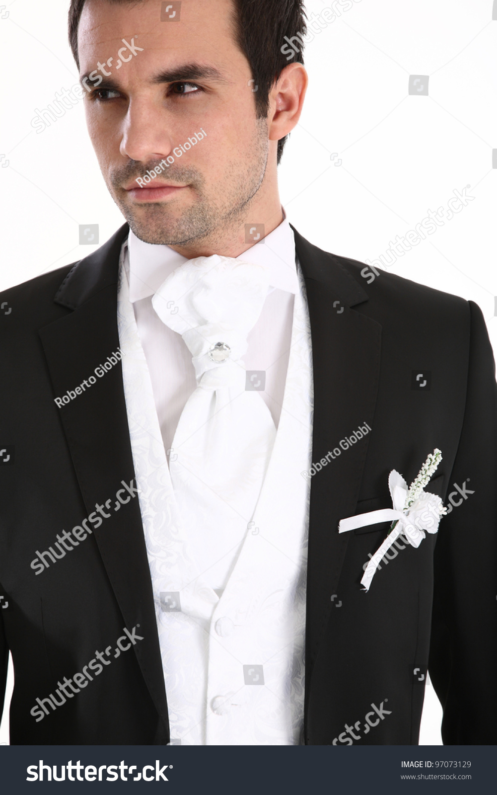 Portrait Of Handsome Man In Tuxedo Stock Photo 97073129 ...