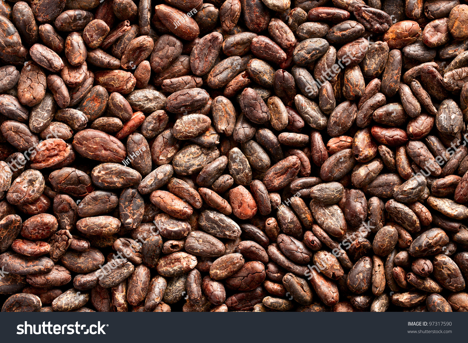 Pattern Cocoa Beans Background Stock Photo 97317590 - Shutterstock