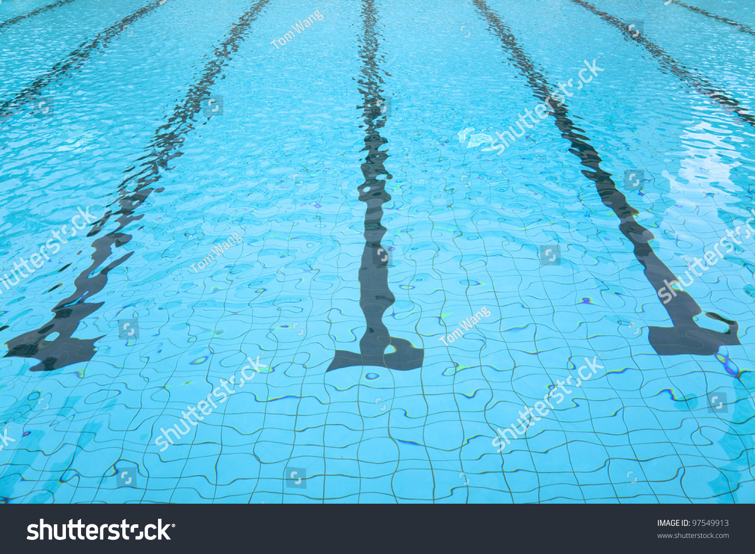 Short essay about swimming
