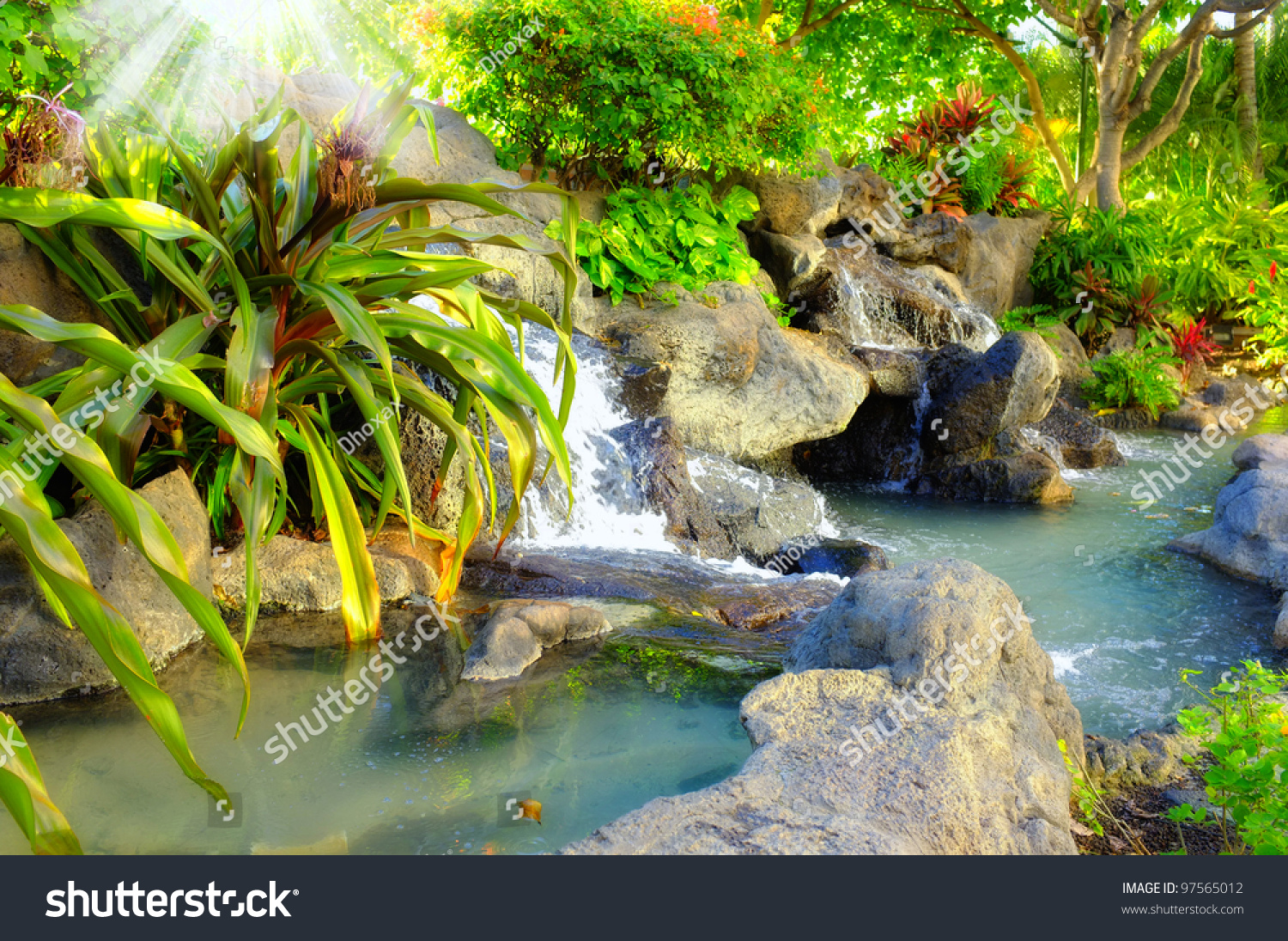 Small Tropical Garden Waterfall Stock Photo 97565012