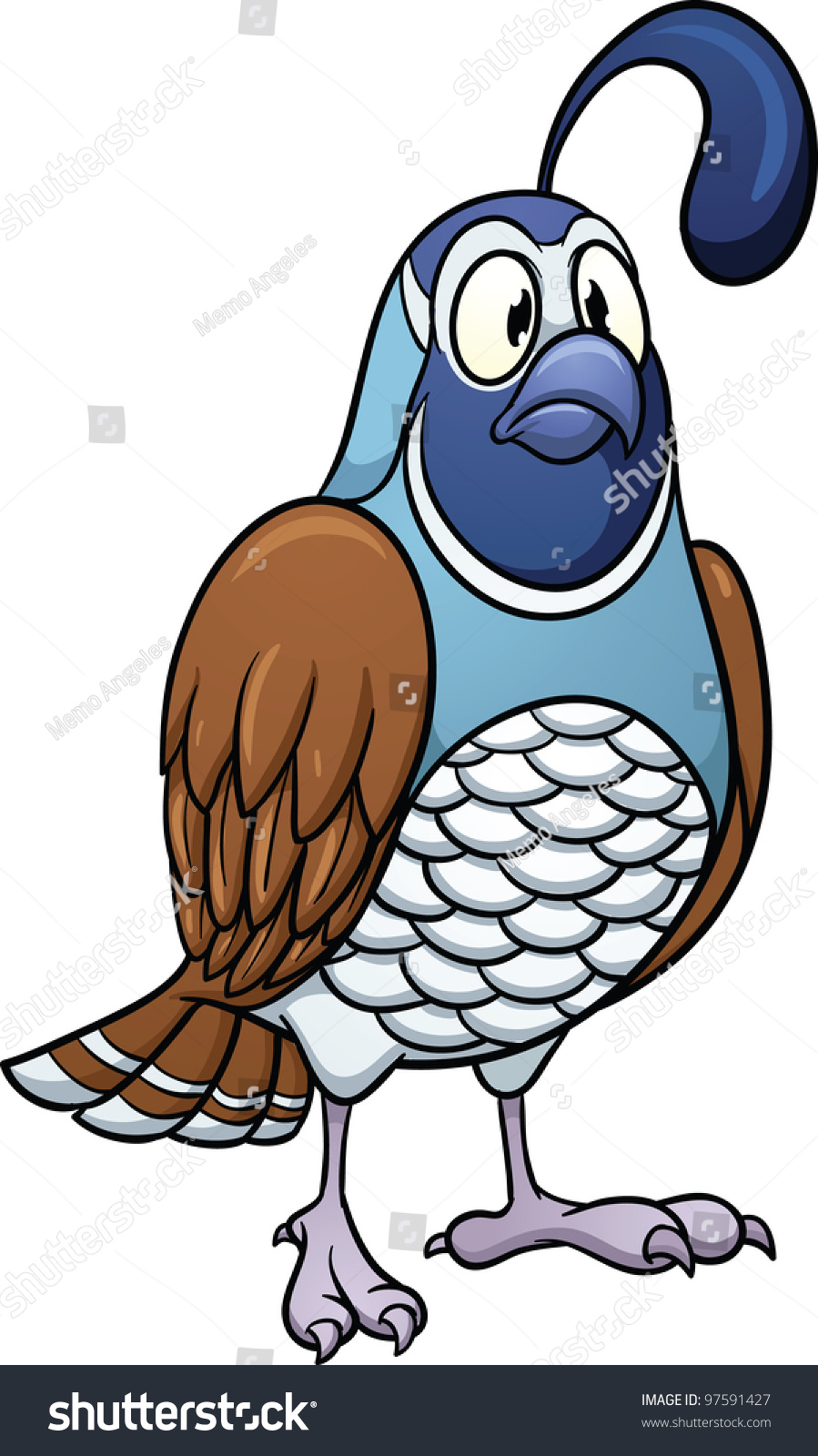 cartoon quail vector illustration with simple gradients all in a single layer for easy editing quail clip art free quail clip art coloring