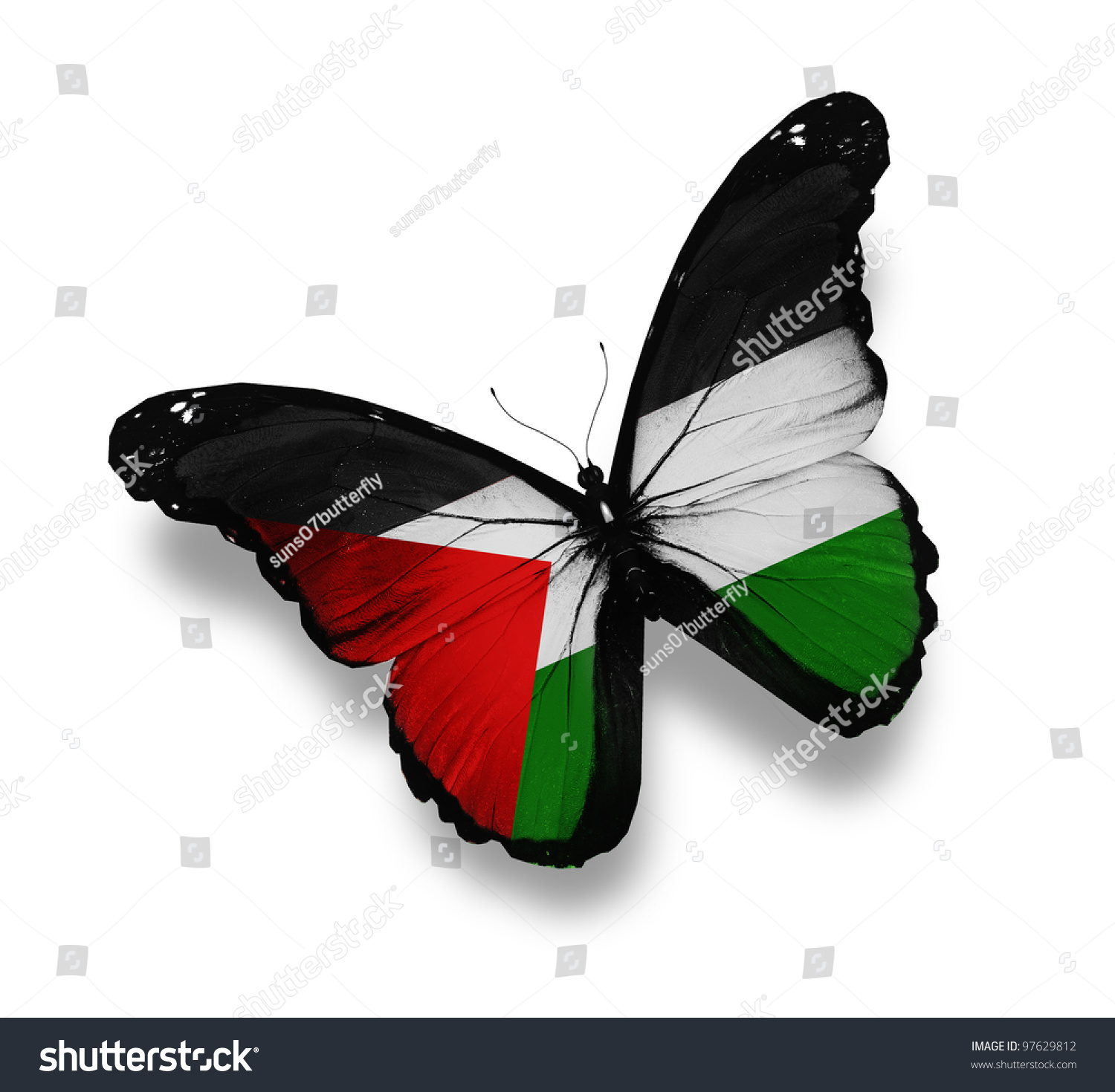 palestine black single men Palestine: painting the world with a single brush  black, green and white colors, denoting the flag of palestine  accords, resolutions the jargon of men in .
