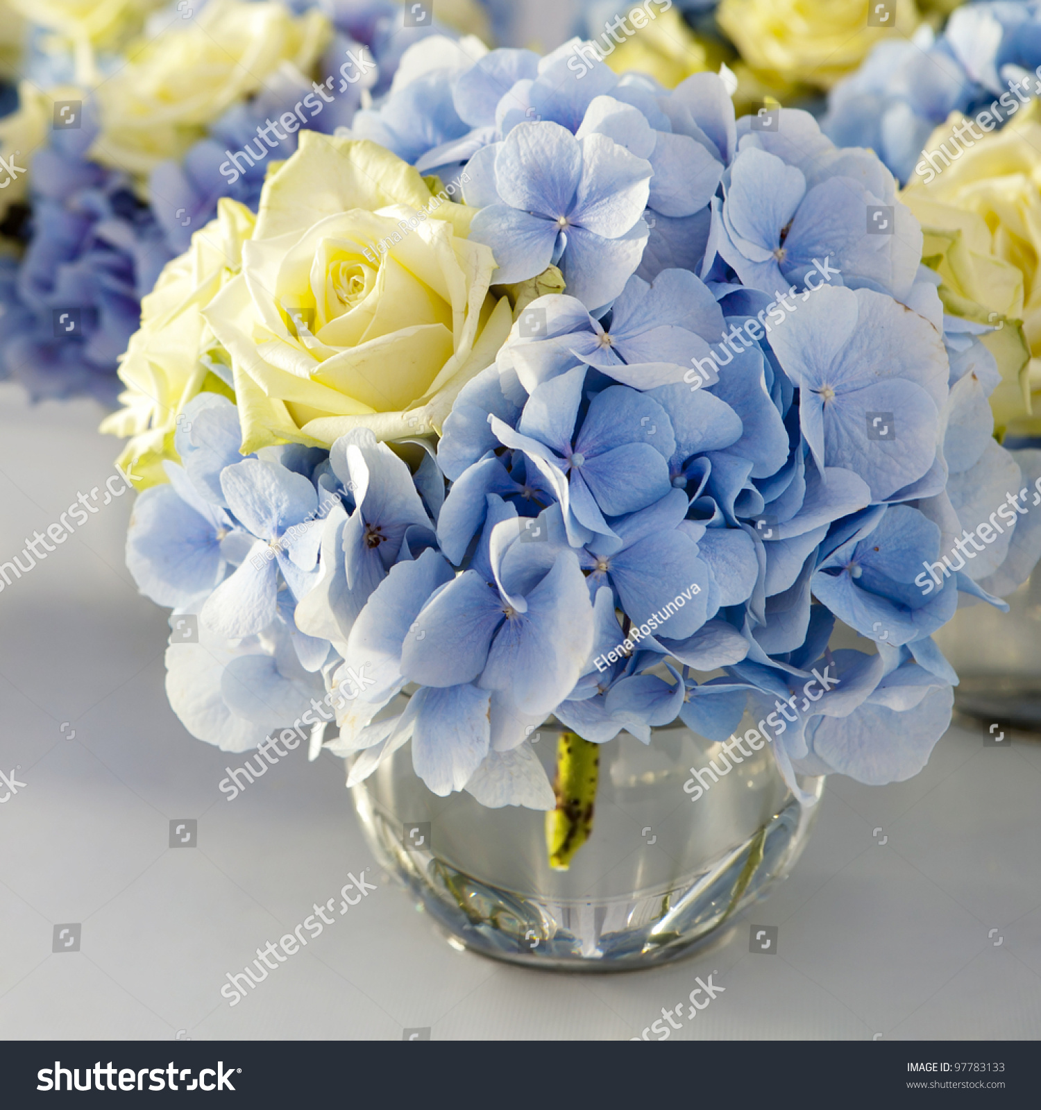 Bouquet white blue flower vase glass stock photo 97783133 bouquet of white and blue flower in vase of glass decoration of dining table dhlflorist Gallery
