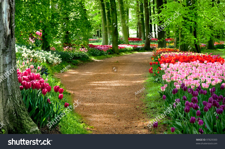 Beautiful Spring Garden Stock Photo 97829300 Shutterstock