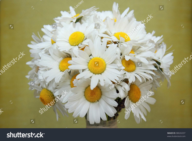 Wedding Daisy Flower Bouquet Stock Photo (Edit Now) 98026337 ...