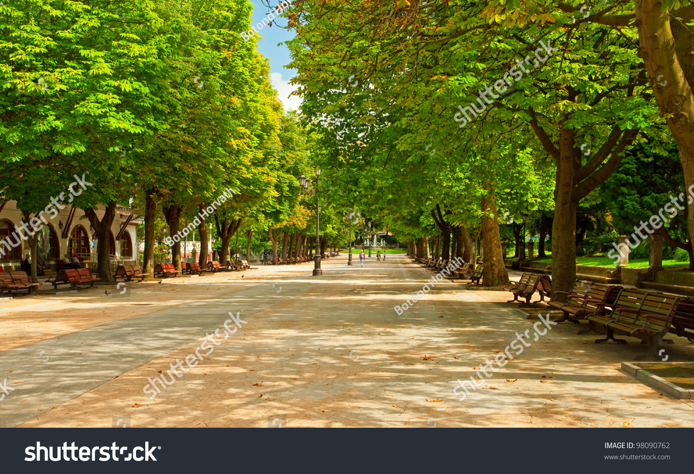 Nice Park City Trees Stock Photo 98090762 Shutterstock
