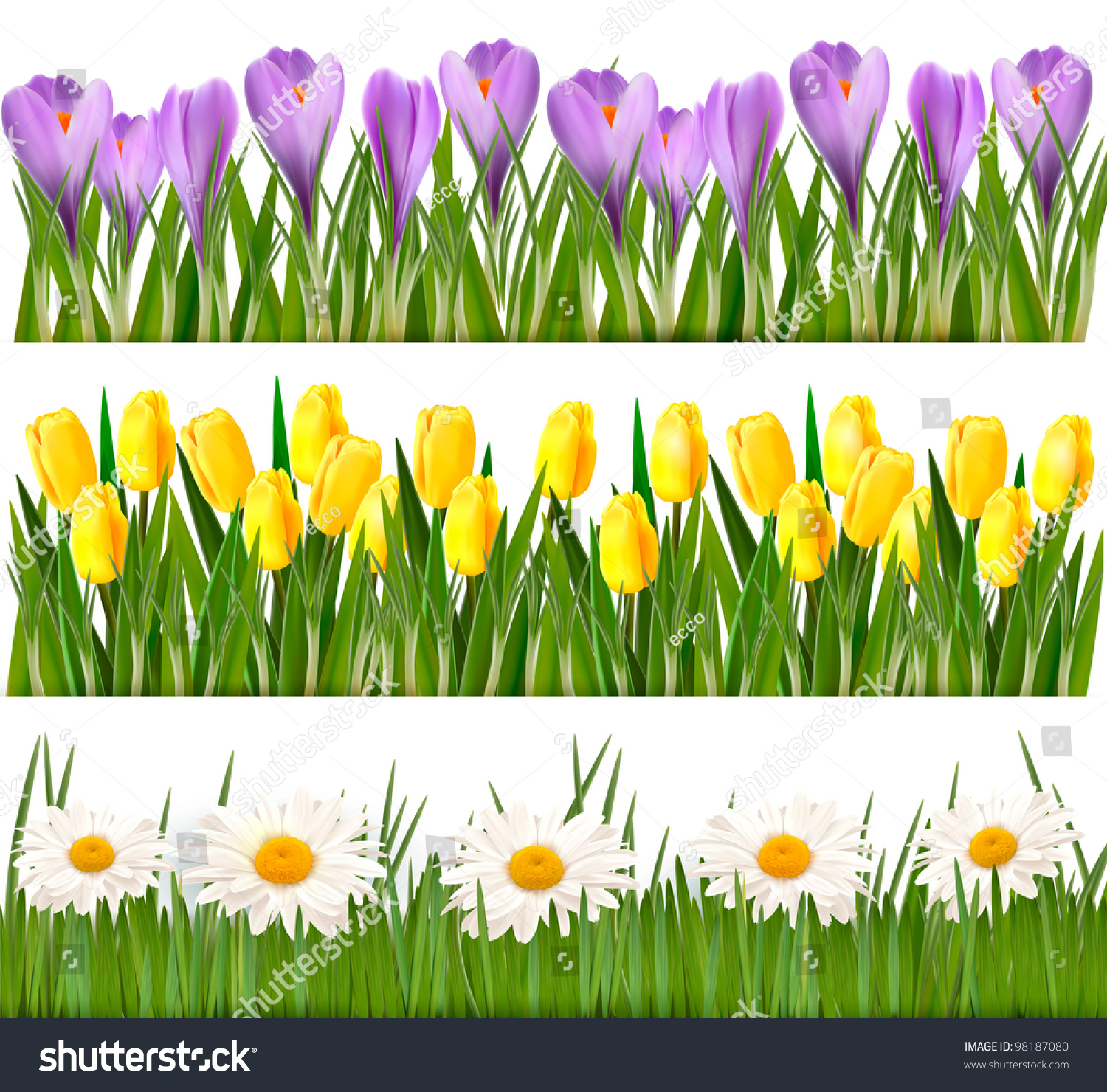 Royalty Free Fresh Spring Flower Borders Vector 98187080 Stock