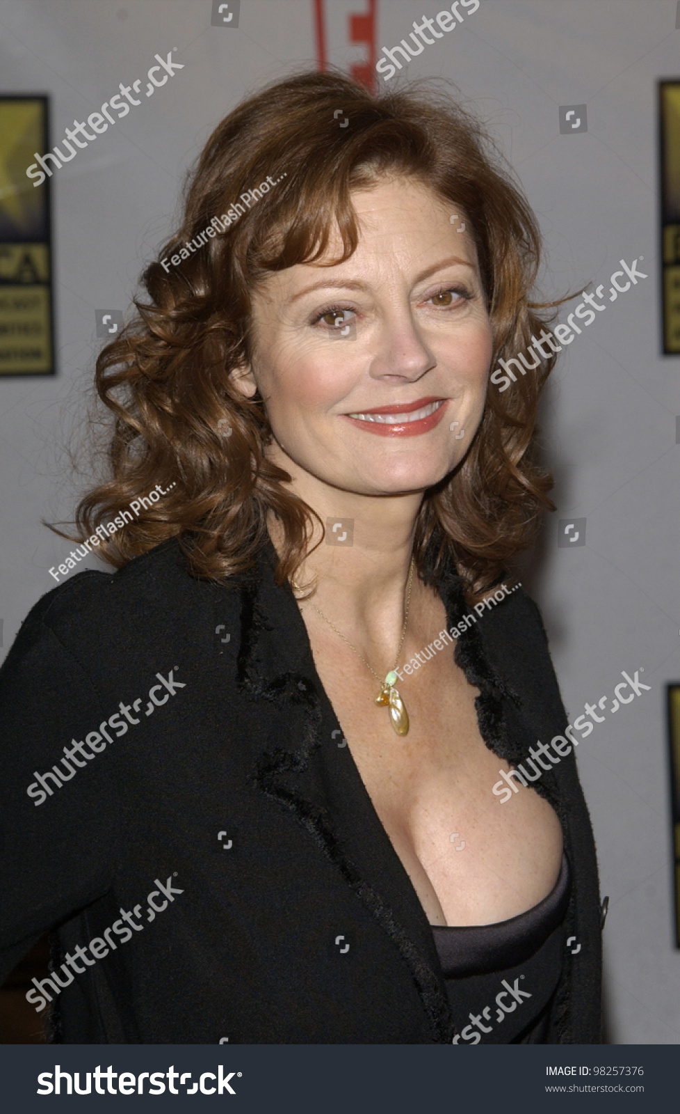 susan sarandon films