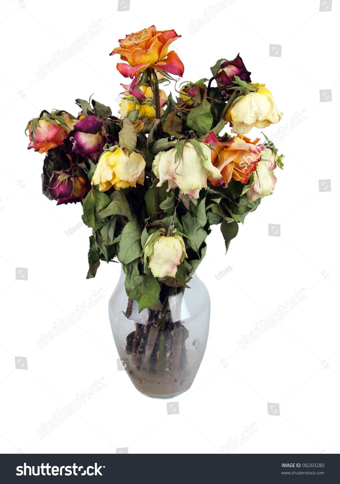 Bouquet Dead Roses Clear Glass Vase Stock Photo Edit Now 98269280