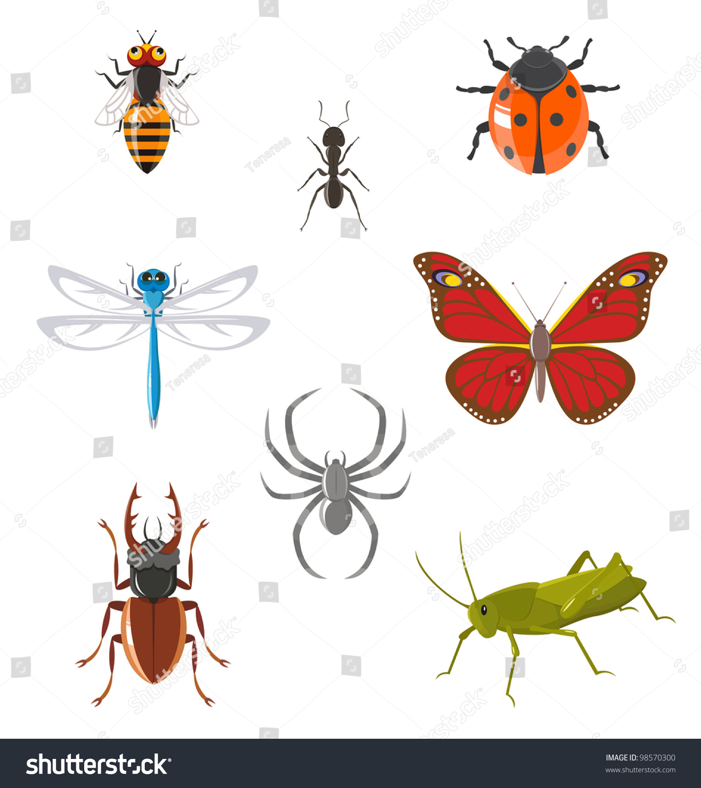 Worksheet Butterfly Beetle set various insects such ant butterfly stock vector 98570300 of as beetle dragonfly spider