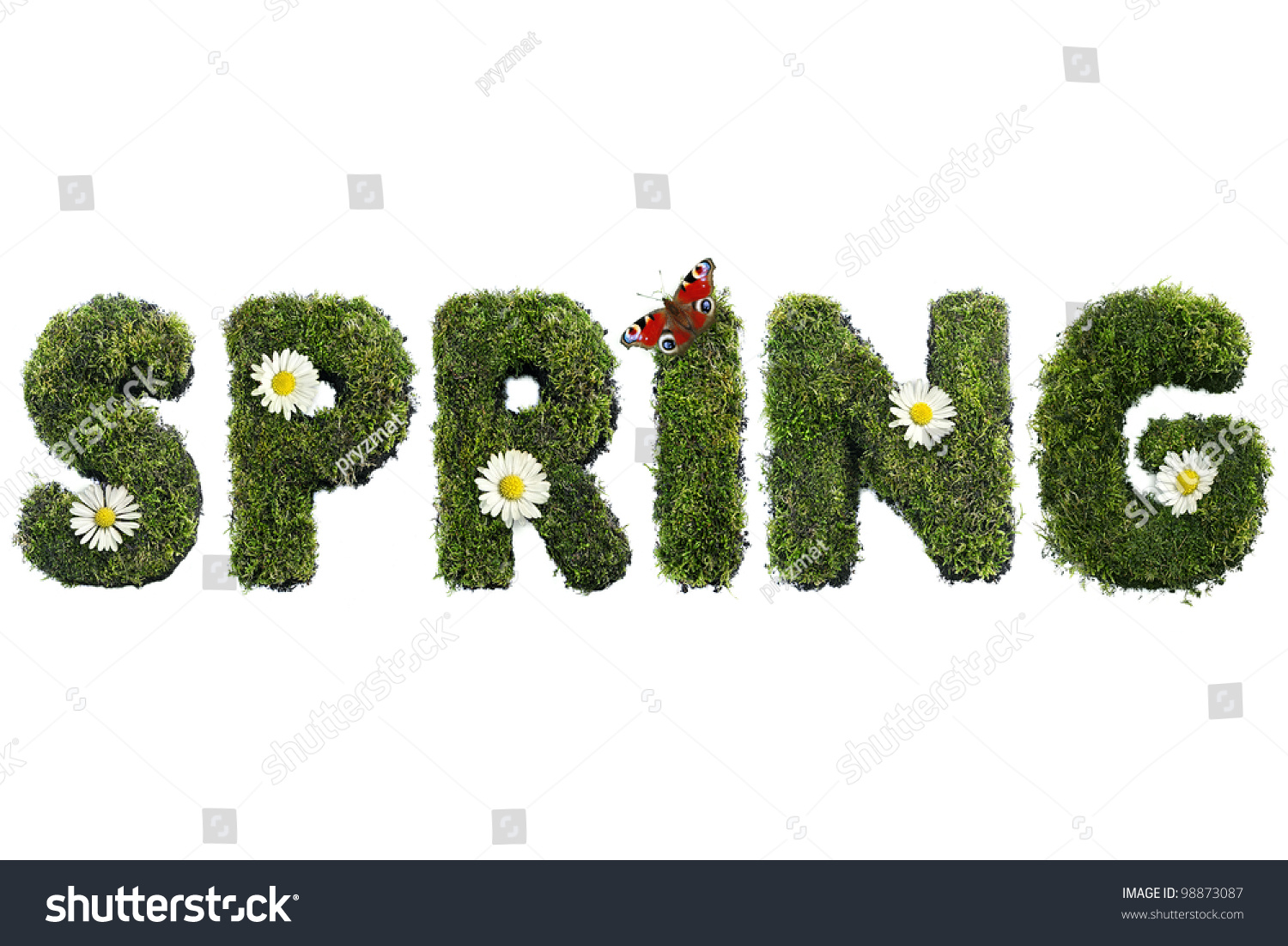 Spring Word Formed Moss Flowers Butterfly Stock Photo Royalty Free