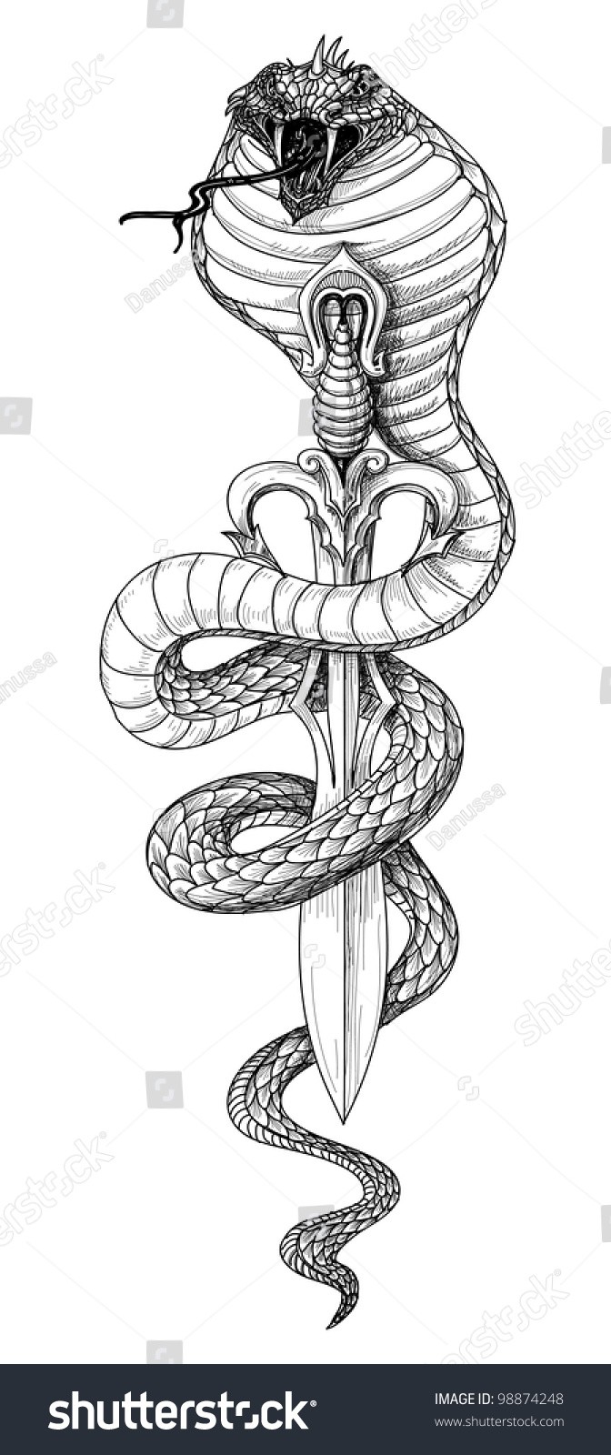 snake sword detailed pencil drawing stock vector 98874248