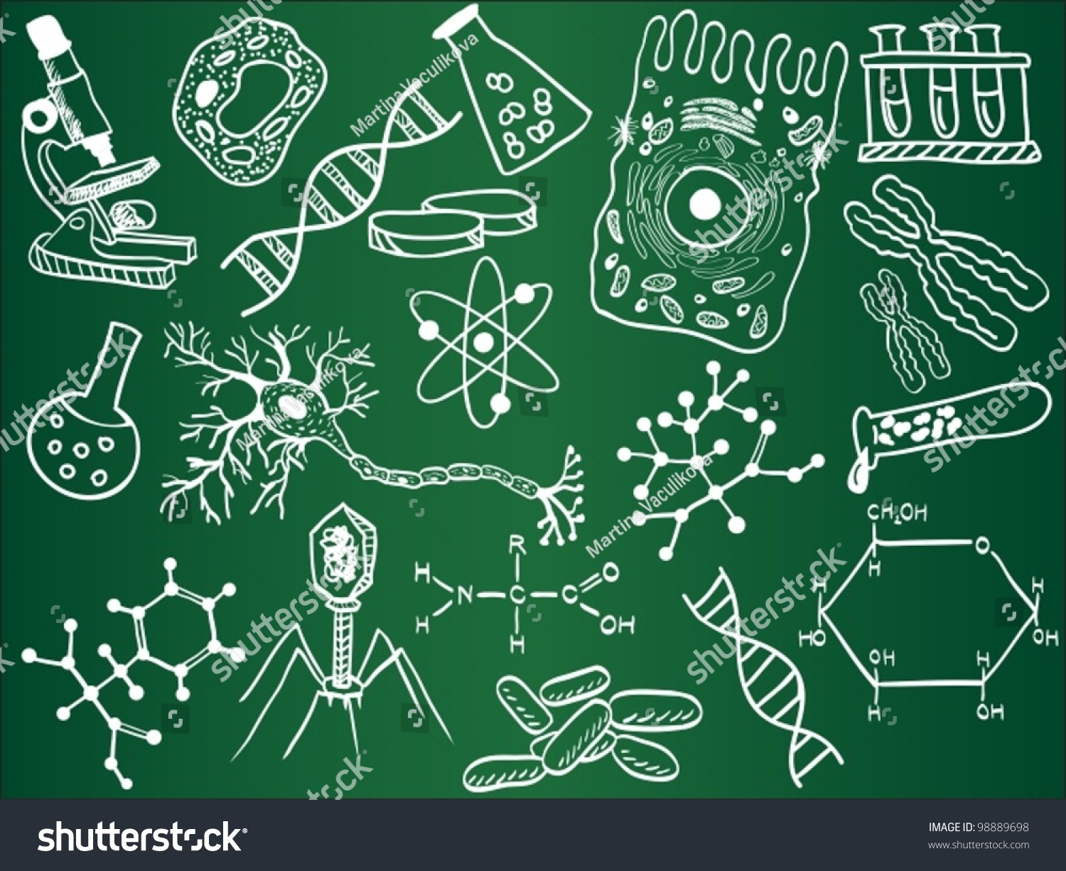 Biology Sketches On School Board Vector Stock Vector ...