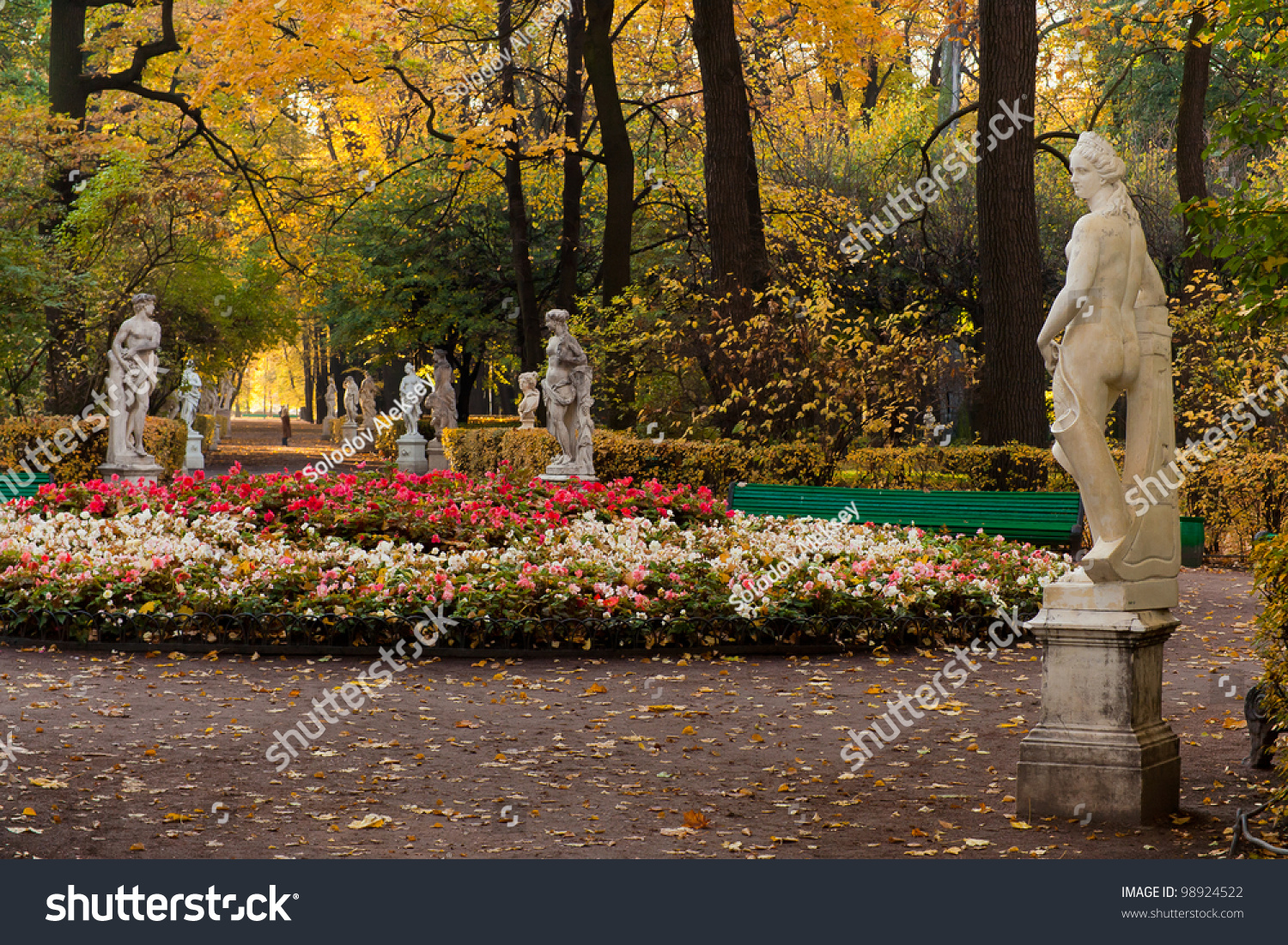 Flower Bed Old Park Summer Garden Stock Photo (Royalty Free ...