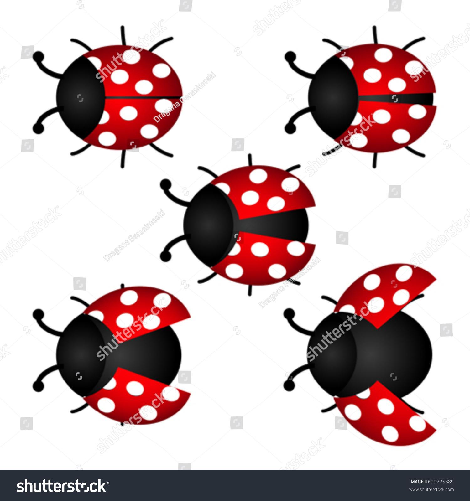 colorful set ladybird vector stock vector 99225389 shutterstock