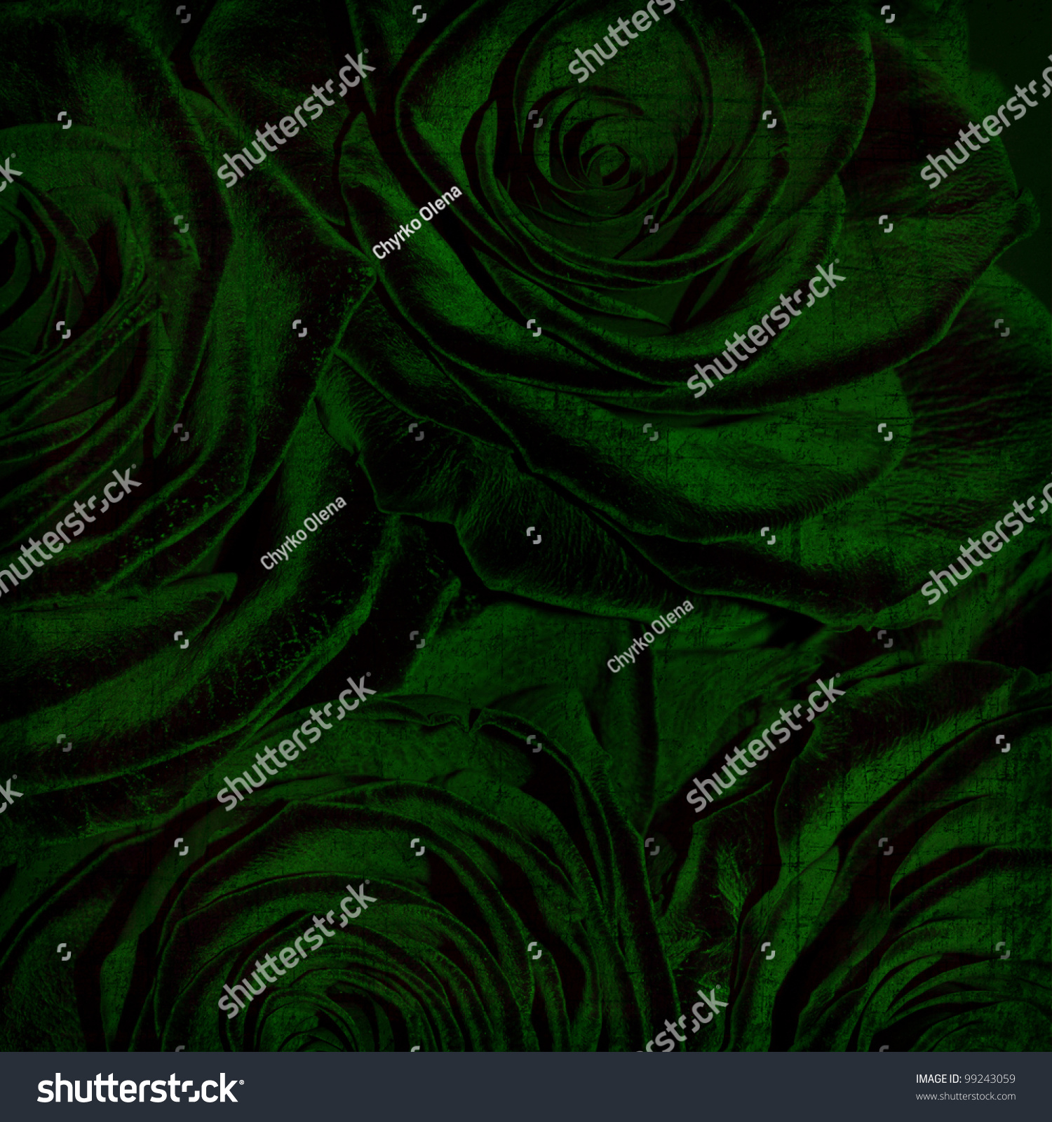 Abstract grunge textured background with green roses for the cover design or photo album pages